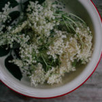 Elderflower Season | Two Ways